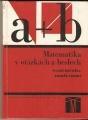 Matematika v otázkách a heslech  - Matuška, Trefný