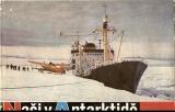 Naši v Antarktidě - kol. autorů