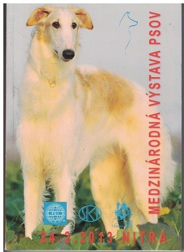 Medzinárodná výstava psov Nitra 2013