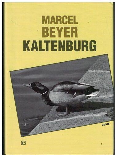 Kaltenburg - Marcel Beyer