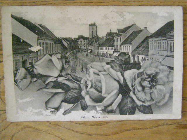 Blatná - město růží