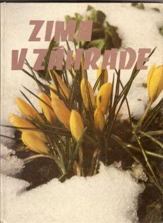 Zima v zahradě - slovensky